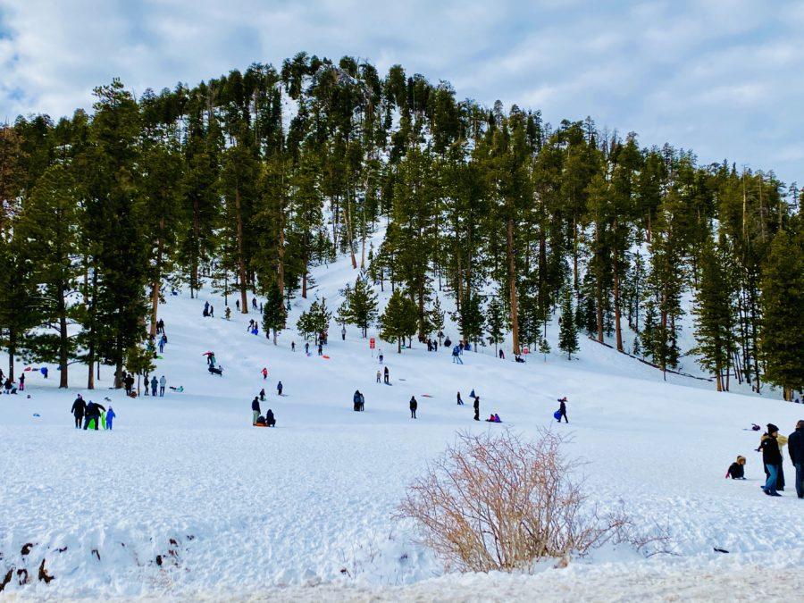 Deslizado en la nieve